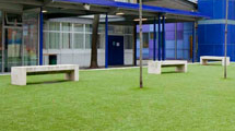 Kids Play and Schools Grass